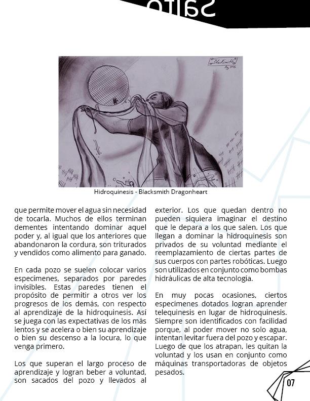 Revista 8 Salto al reverso7